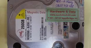Phục hồi dữ liệu MD02500-BJDW