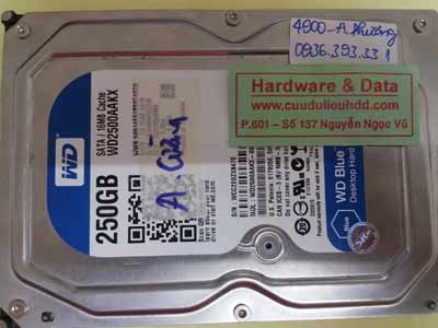 Lấy lại dữ liệu ổ cứng Western PC ngập nước