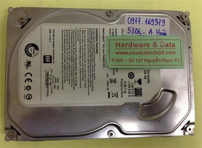 Phục hồi dữ liệu ổ cứng Seagate 250GB