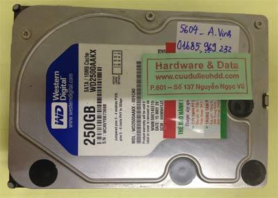 Lấy lại dữ liệu ổ cứng Western 250GB