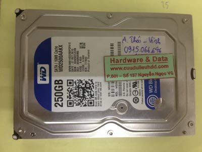 Lấy dữ liệu ổ cứng Western 250GB