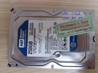 Cứu dữ liệu Western 250GB