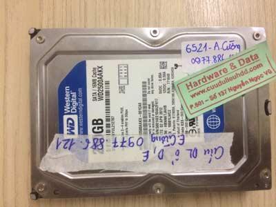 cứu dữ liệu-Western-250GB