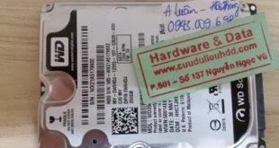 Khôi phục dữ liệu western 250GB
