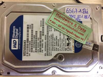 Khôi phục data-Western-250GB