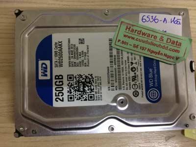 recoverdữ liệu-Western-250GB