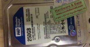 Khôi phục dữ liệu ổ cứng Western 250GB