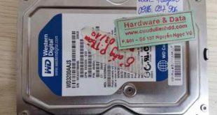 ổ cứng Western 320GB bị chết cơ