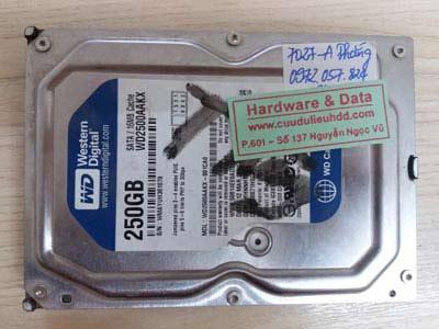 7027 HDD Western 250GB bị hỏng đầu từ