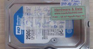 7028 HDD western 250GB bị chết cơ