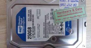 7069 ổ cứng PC western 250GB hỏng đầu từ