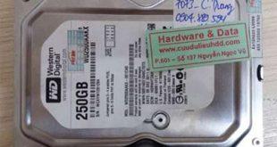 7073 ổ cứng Western 250Gb lỗi đầu từ