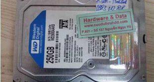 3-3 Western 250GB chết cơ